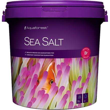 Sea salt 22 кг
