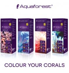 Aquaforest Питание для кораллов AF Amino Mix + AF Build + AF Energy + AF Vitality (4 х 50 мл)