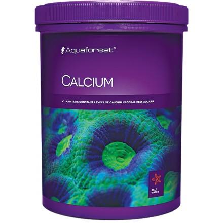 Calcium 1000 г
