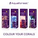 Aquaforest Питание для кораллов AF Amino Mix + AF Build + AF Energy + AF Vitality (4 х 10 мл)
